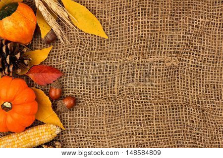Autumn Side Border Of Pumpkins, Leaves And Gourds Against A Burlap Background