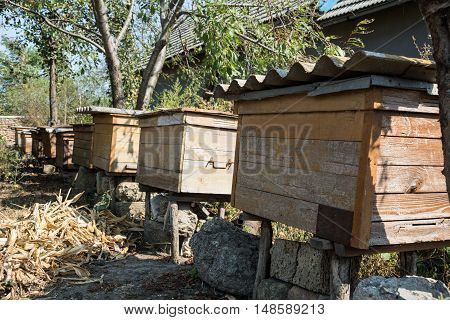 Wooden beehives in the village on a sunny day