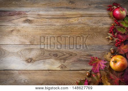 Thanksgiving background with apples acorns berries and fall leaves on the old wooden background. Thanksgiving background with seasonal berries and fruits. Abundant harvest concept.