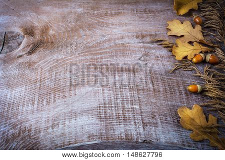 Thanksgiving background with oat acorn and fall leaves on the old wooden background. Thanksgiving background with seasonal symbols.