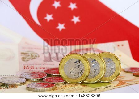 Singaporean one dollar coins with notes and flag.