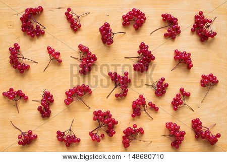 Background with red berries of viburnum on wood shot from above.