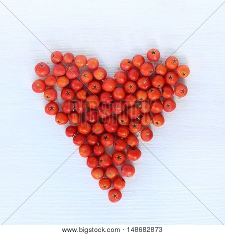 flat layout of red berries lying on a light wooden background top view / the heart of rowan
