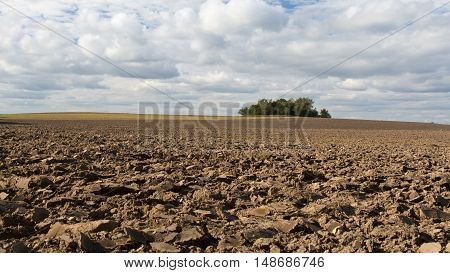 Ploughed field on a cloudy day in September