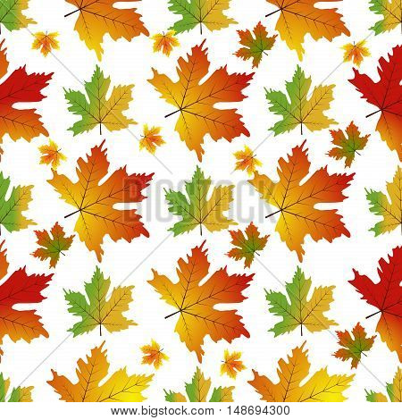 Autumn Set of Orange Maple Leaves on White Background Vector. Foliage plant nature seamless maple leaf pattern. Natural autumn season texture maple leaf seamless pattern.