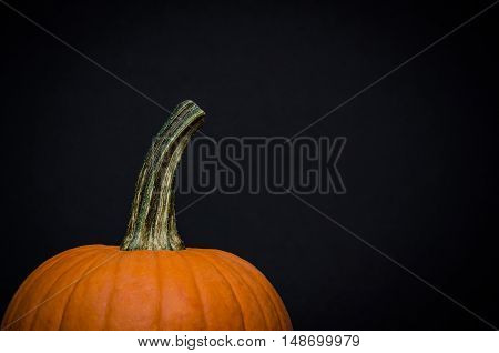 Image of the top half of a pumpkin on black background