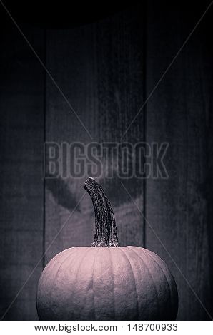 Toned vintage style image of a pumpkin with a wood background