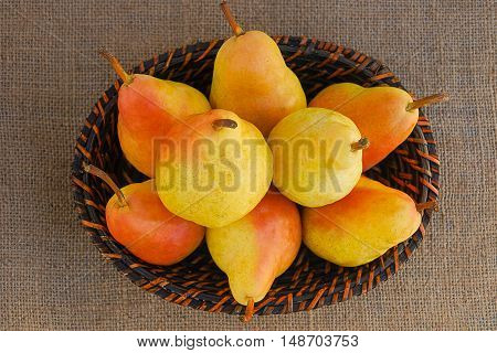 Yellow and pinkish big juicy pears in a basket from top view