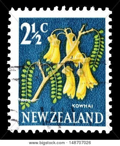 NEW ZEALAND - CIRCA 1967 : Cancelled postage stamp printed by New Zealand, that shows Kowhai flower.
