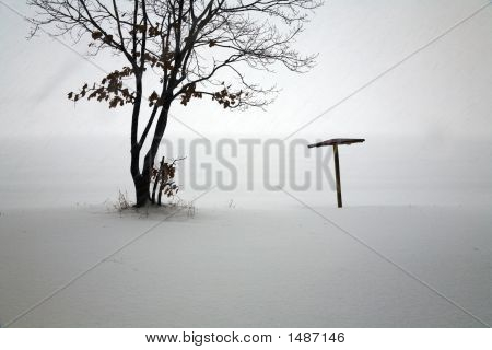 Snowfall At Isolated Beach