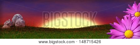 grass field banner with rocks and pink flowers on border - 3D render