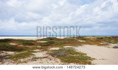 sand dunes of santa maria on sal island