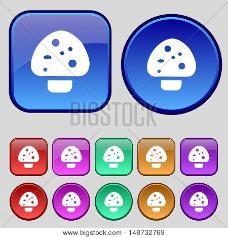 Mushroom Icon Sign. A Set Of Twelve Vintage Buttons For Your Design. Vector
