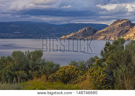 Okanagan Lake near Summerland British Columbia Canada with Sage and Flowers in the Foreground