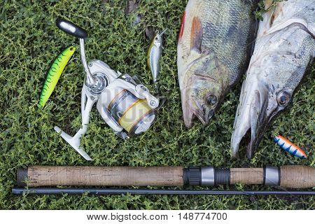 Fishing concept with spinning rod, spool, fish and lures on green grass.