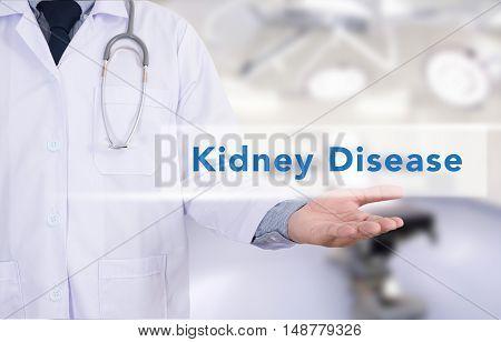Medicine doctor hand working Kidney Diseasedoctor work to touch hand