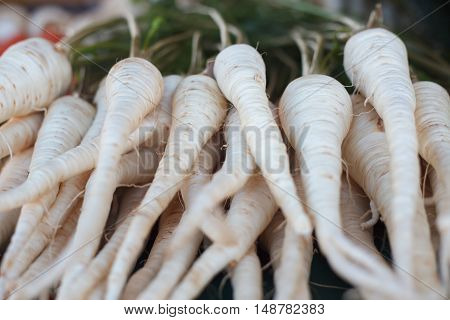 Pile of raw parsley roots on the market. Parsley root background.