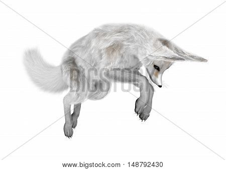3D Rendering Fennec Fox On White