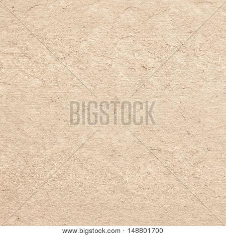 Brown parchment paper texture with space for text