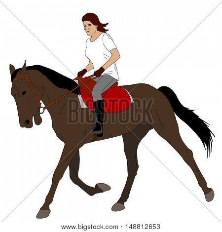 woman riding horse 3 - vector