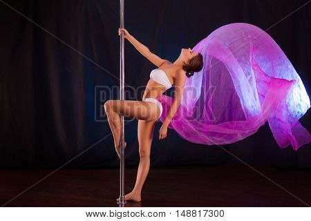 Studio Photo On A Pole Dancer