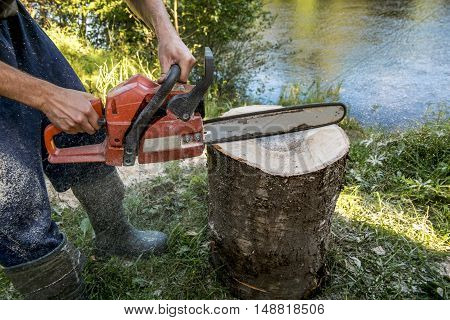 A man with a chainsaw handles a log on a summer day