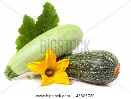 zucchini and squash with leaf and flower isolated on white background.