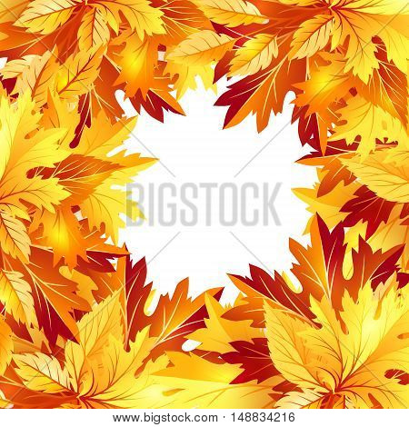 Autumn background with fall maple tree leaves. Vector banners with season foliage decorations and copy space