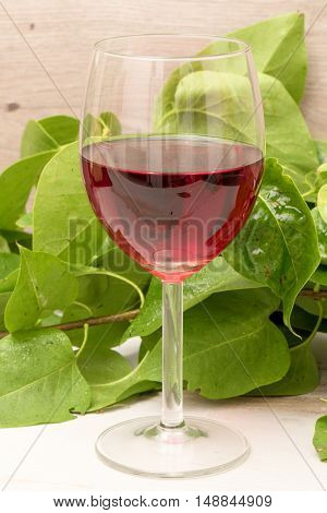 a glass of red wine on a wooden table with greenery
