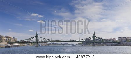Liberty Bridge in Budapest cityscape background nature