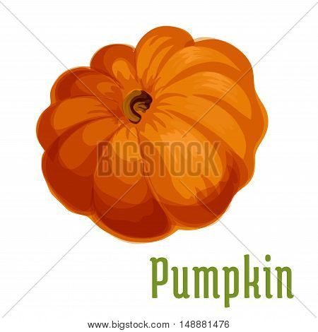 Pumpkin plant icon. Isolated vegetable emblem. Vegetarian product sign for sticker, grocery shop, farm store