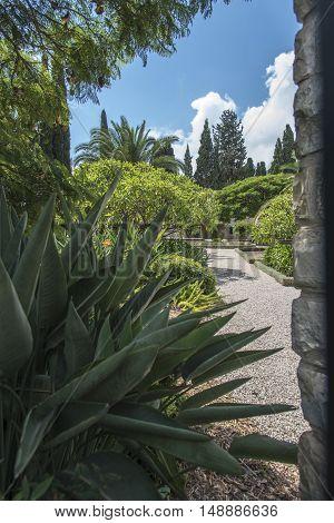 Symmetric green garden in downtown Haifa, Isael