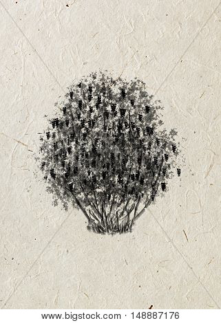 Currant. Drawing bush on a beige rice paper. Black silhouette. Graphic arts.