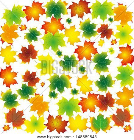 Autumn Leaves Set, Vector Illustration, october colorful