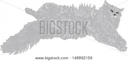 illustration with grey cat isolated on white background