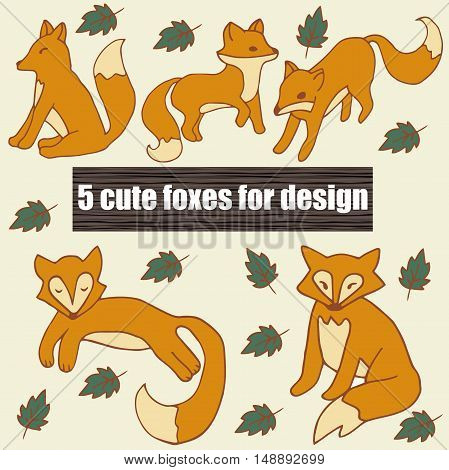 Very high quality original set with five cute foxes for design, illustration