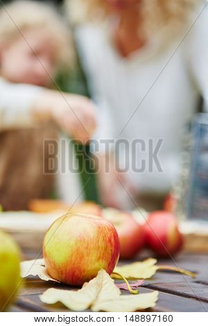 Fresh apples in harvest time in autumn on a table