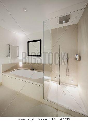 Interior, white modern bathroom, shower and bathtub