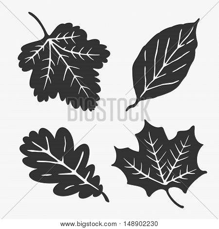 Leaves Silhouette Vector eps 8 file format