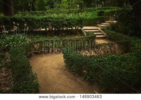 Path and stairs in a green park labyrinth on a quiet summer evening