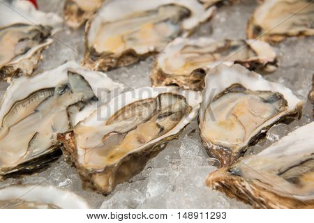 A appetizer Raw oysters on ice Display