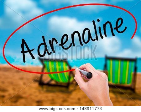 Man Hand Writing Adrenaline  With Black Marker On Visual Screen