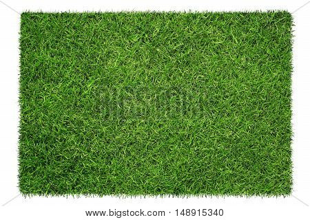 Close up of green grass texture background isolated on white background with copy space