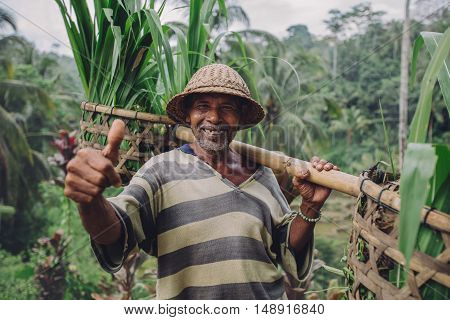 Happy Senior Farmer Giving Thumbs Up