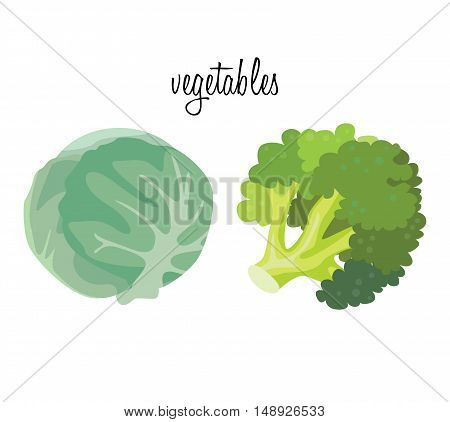 Vegetables: cabbage and broccoli. For your convenience each significant element is in a separate layer. Eps 10