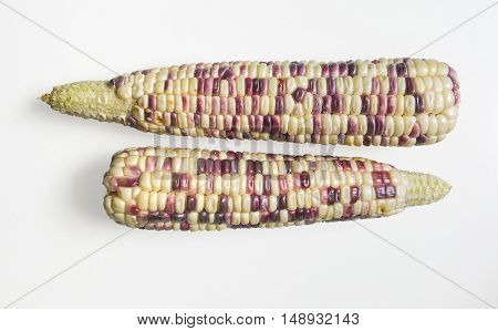 two waxy corn top view on white background