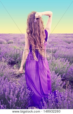 Back View Of A Young Woman With Long Blonde Hair In A Purple Dress Walking In The Lavender Field At
