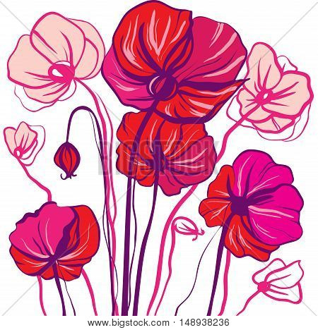 Decorative line drawing bright red and pink poppy flowers on a white background gentle romantic drawing application
