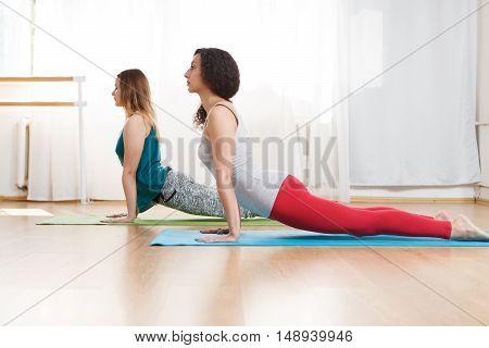 Indoor portrait of two young caucasian women practice cobra pose