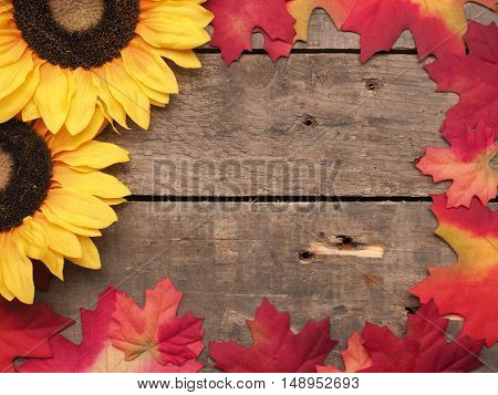 Colorful leaves and sunflowers on a wooden background autum or seasonal background